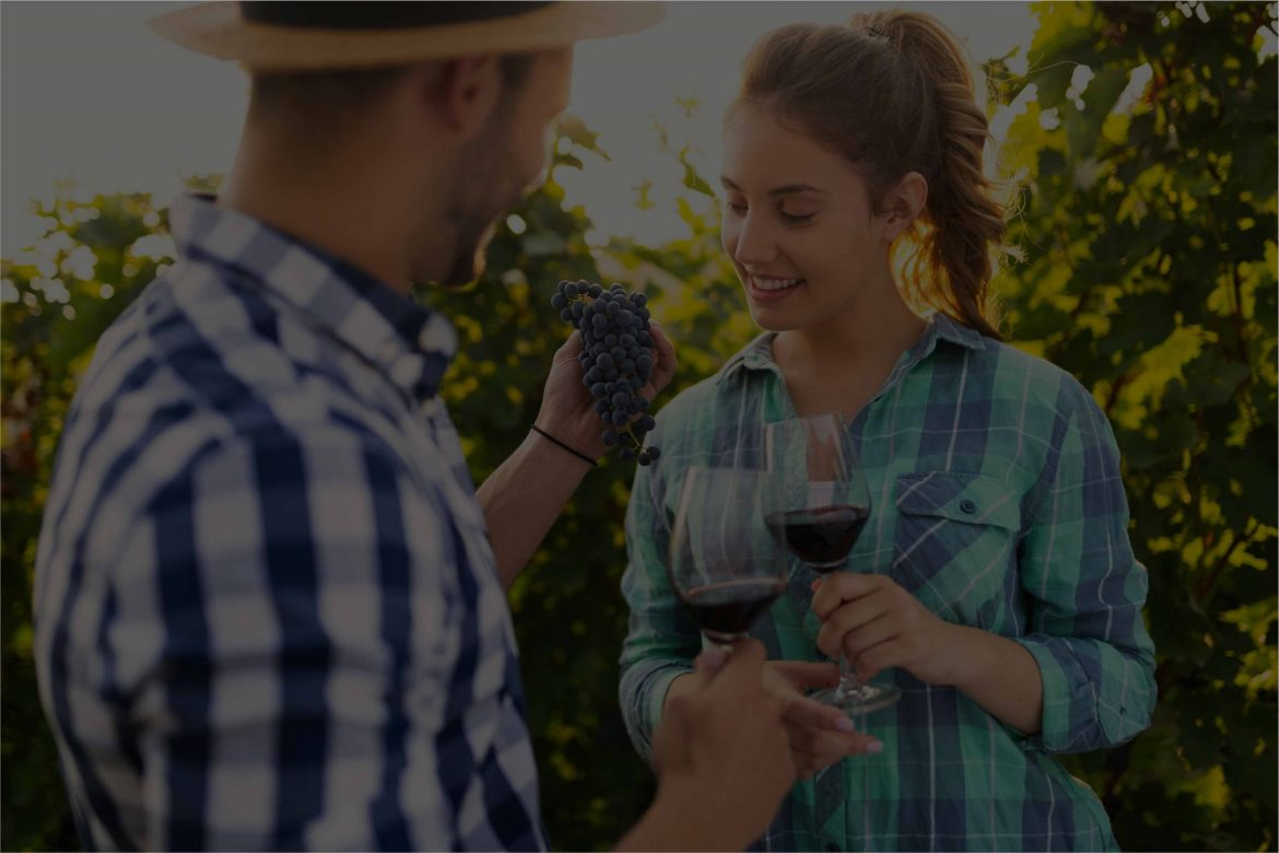 woman and man in vineyard drinking wine UPH3DSV 3 scaled